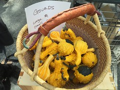 gourds at farmers market IMG_8180