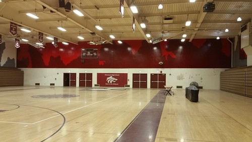 Claremont wall 4 - gym graphics