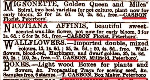 Casbon florist ads Gardening Illustrated Vol X 1888