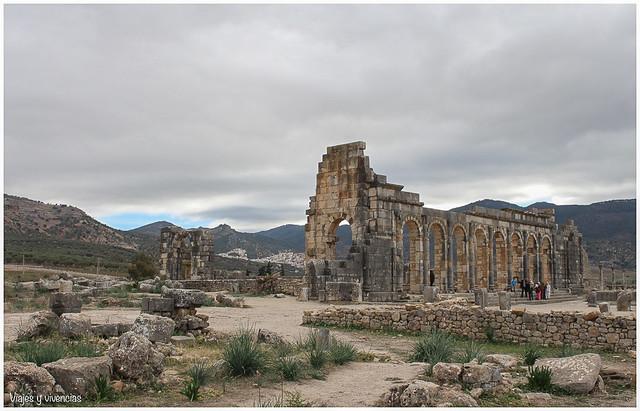 basilicagral