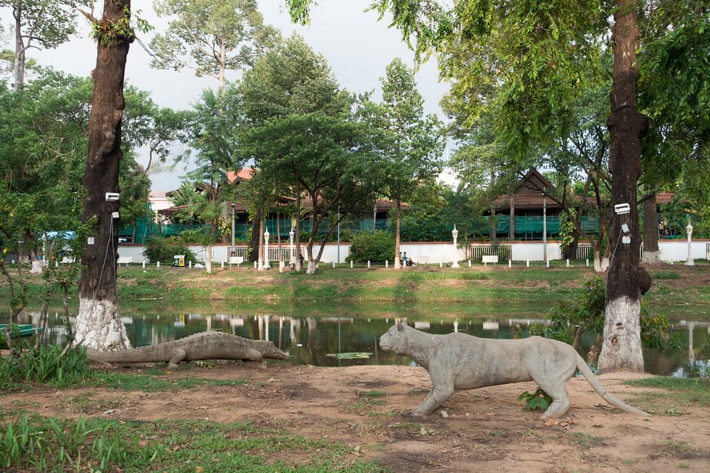 Cambodia-02086