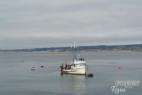 160702h Old Fishermans Warf Monterey _23