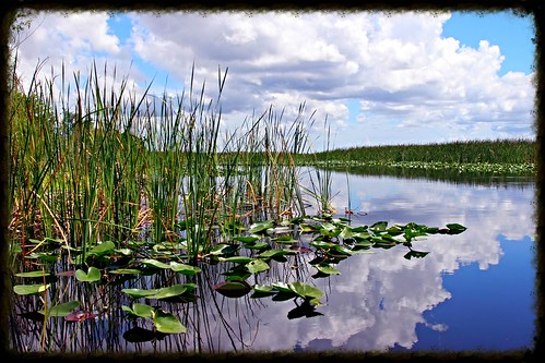 Everglades NP kayaking