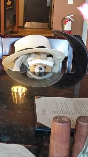 Hat Bear