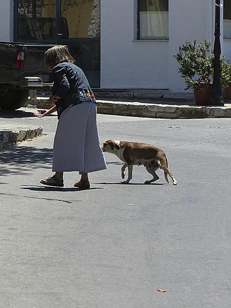 dame et chien
