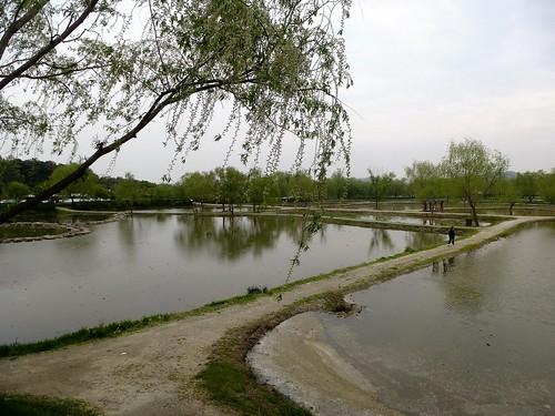 c16-Buyeo-Ville-Etang Gungnamji  (1)