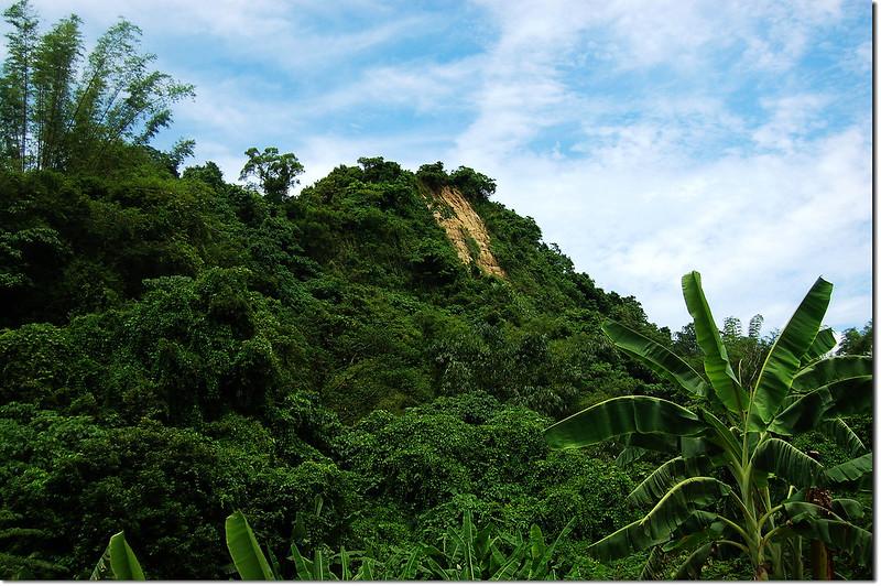 登山口望左鎮山