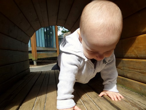 baby crawling through a wooden tunnel