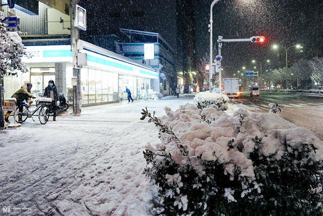 那些RX1走過的冬季 | 31 | 京都雪漫飛