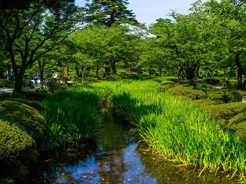 日本。金澤兼六園(Pentax 645D)