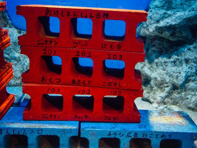 160810_takeshima_aquarium-13
