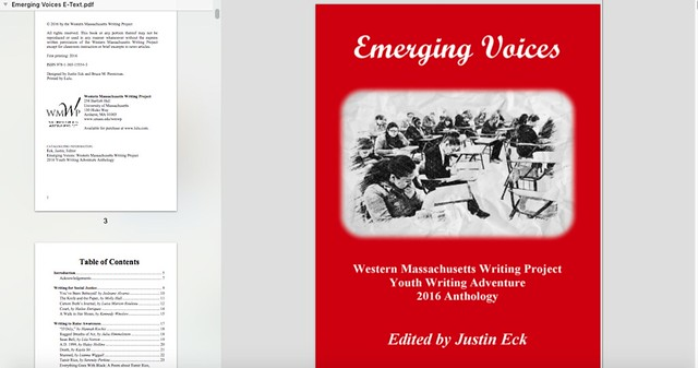Emerging Voices WMWP Youth publication 2016