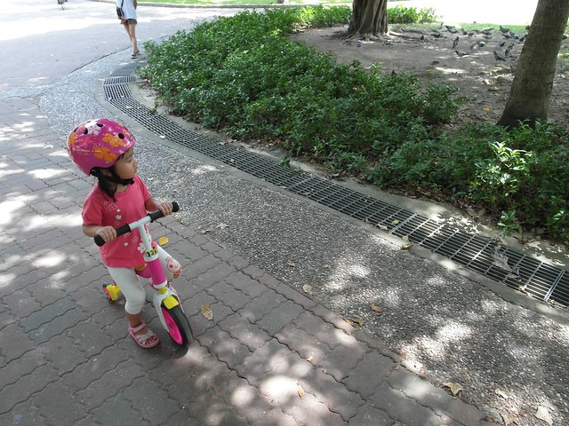 天氣超好出門騎車@Scoot & Ride Highwaybaby平衡車