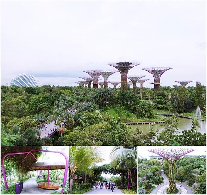 25 新加坡四天三夜自由行 美食美景購物