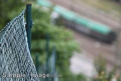 Sankyo Koki Komura 200mm f/4.5 (@ f/4.5)