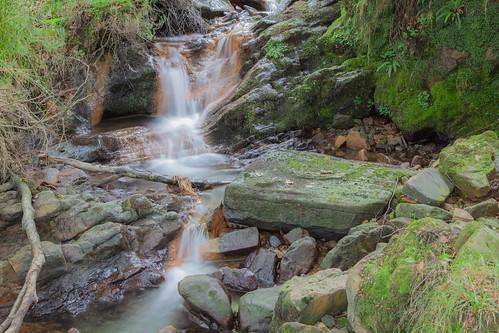 Parque Natural de #Gorbeia #DePaseoConLarri #Flickr - -7990