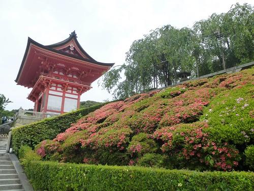 jp16-Kyoto-Kiyomizu-dera (6)