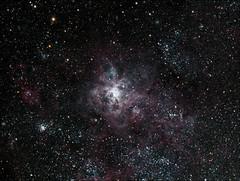 Tarantula Nebula - NGC 2070