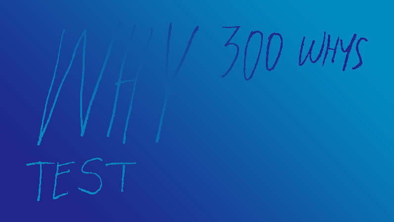 300 Whys