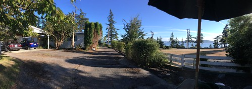 Samish Island Backyard-001