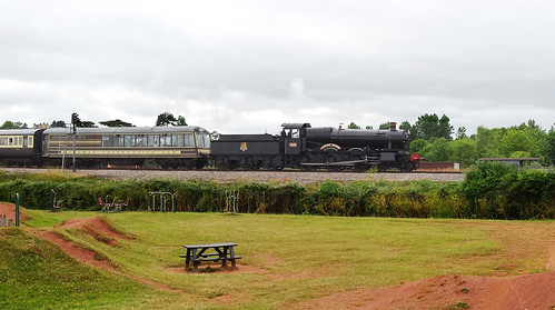 Steam train near Paignton