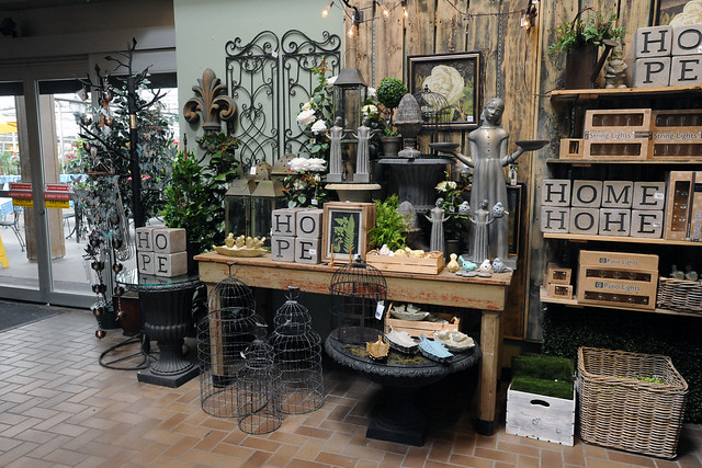 Bachman's display