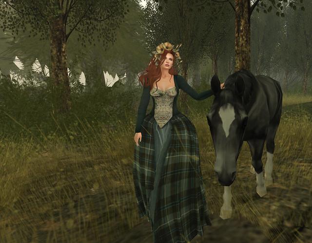 Highland Moors