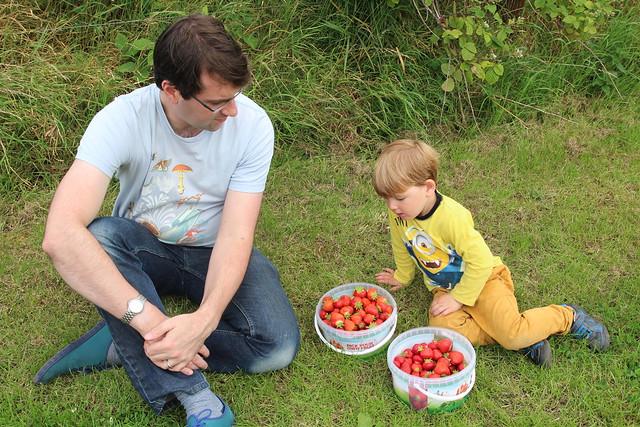 Belhaven fruit farm
