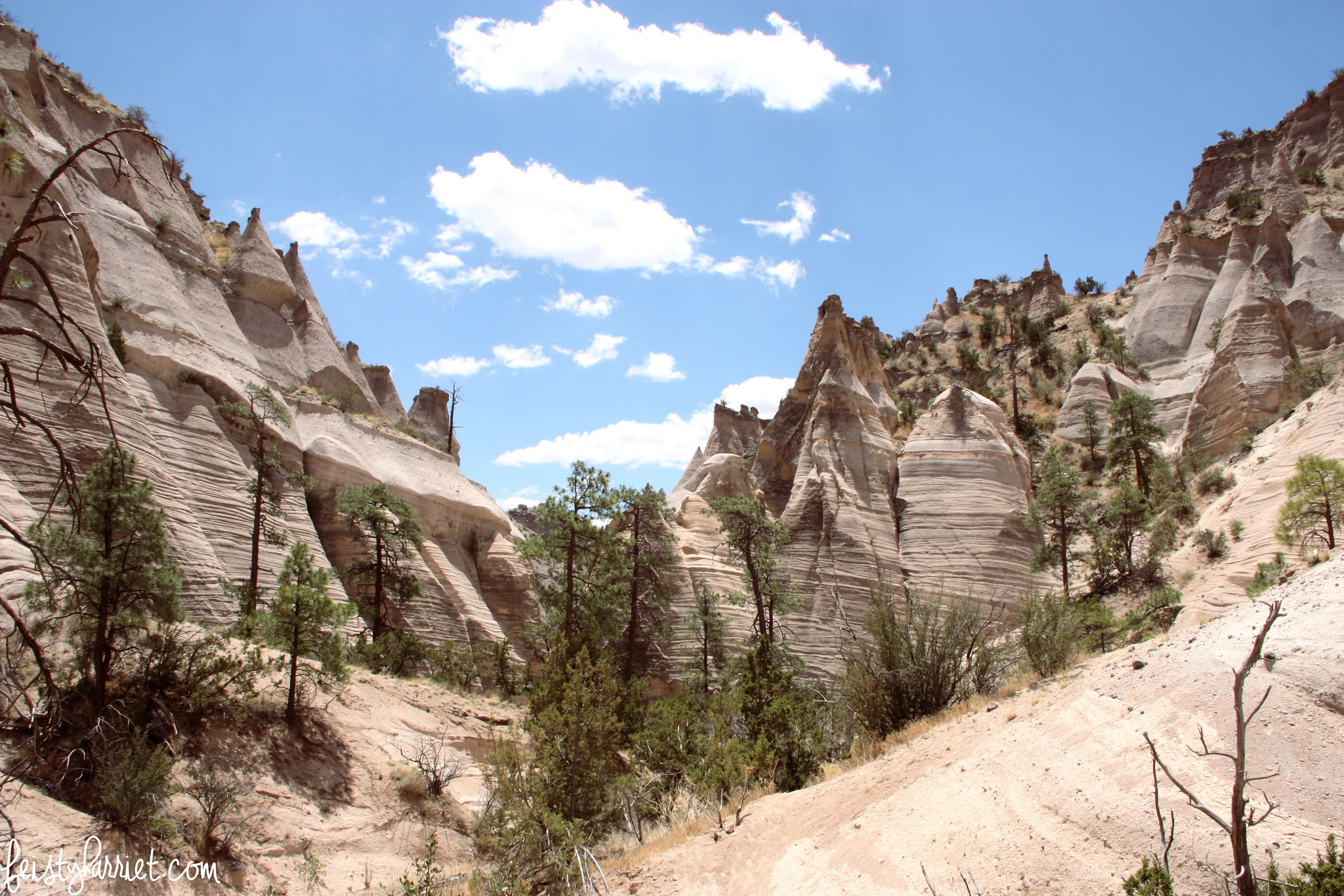 Kasha-Katuwe Tent Rocks NM_feistyharriet_July 2016 (8)