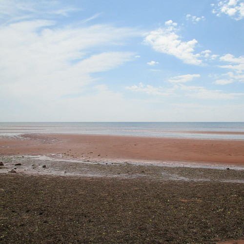 Horizon #pei #victoria #victoriabythesea #beach #red #lowtide #northumberlandstrait #latergram