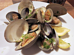 course03clams