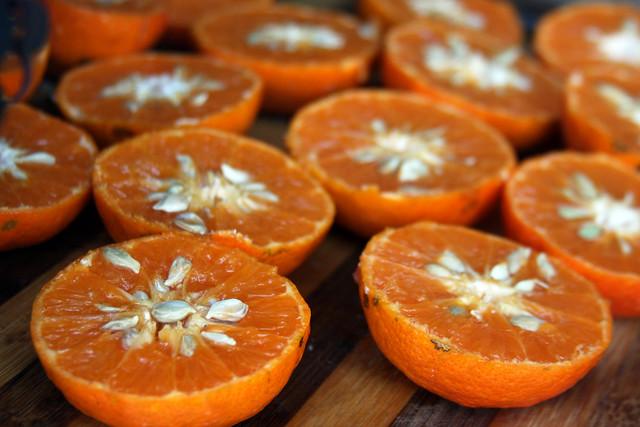 Bondiola en Salsa de Mandarina (9)
