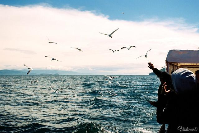 Прогулка на катере по Чивыркуйскому заливу