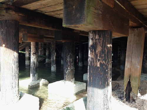 Creosote wood pilings at harris avenue shipyard flickr for Dock pilings cost
