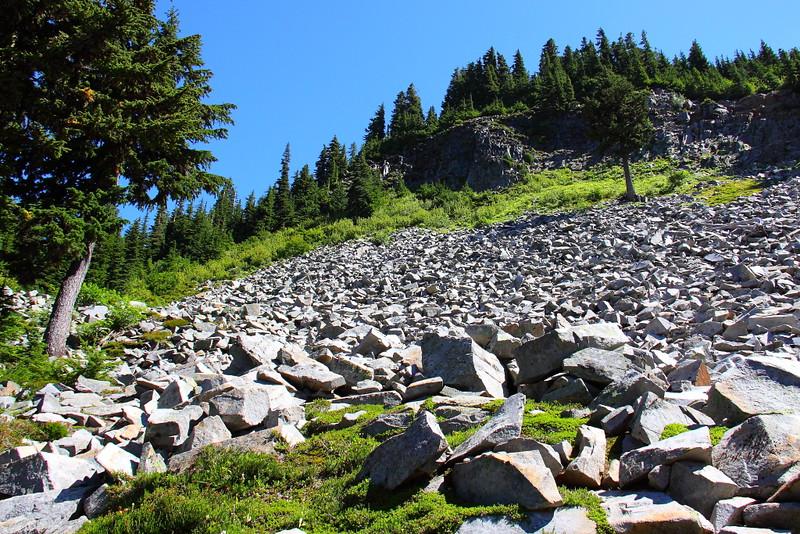IMG_7109 Pinnacle Peak Trail