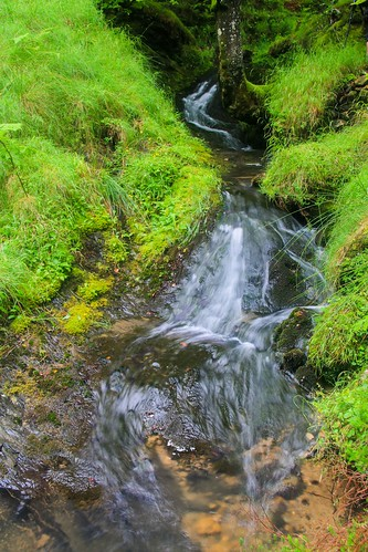 Parque Natural de #Gorbeia #DePaseoConLarri #Flickr - -912