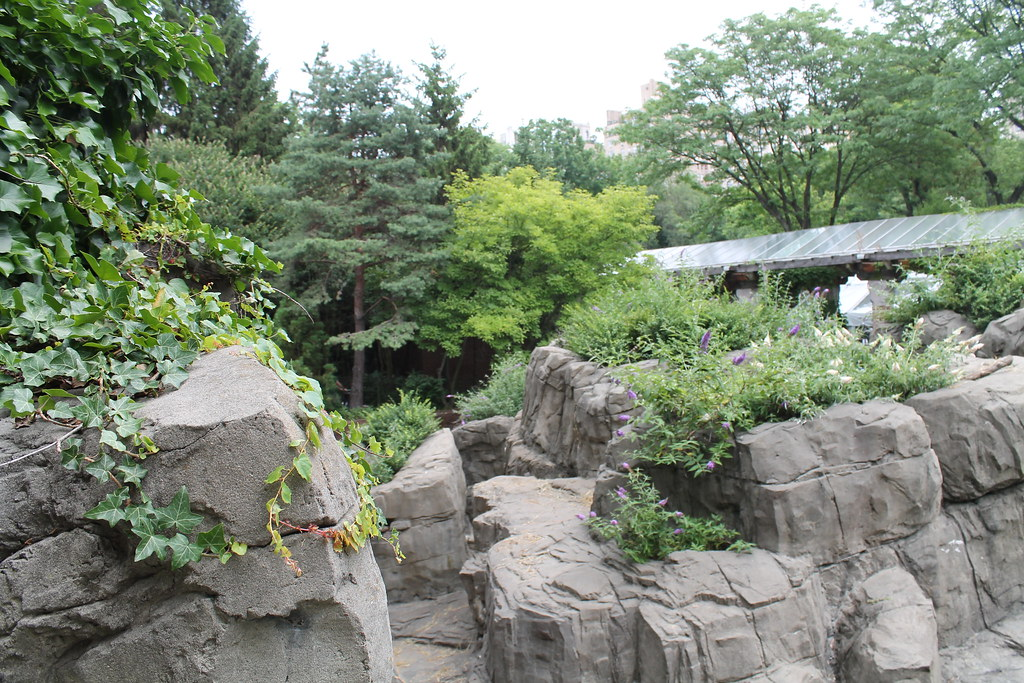 Central Park Zoo (62)