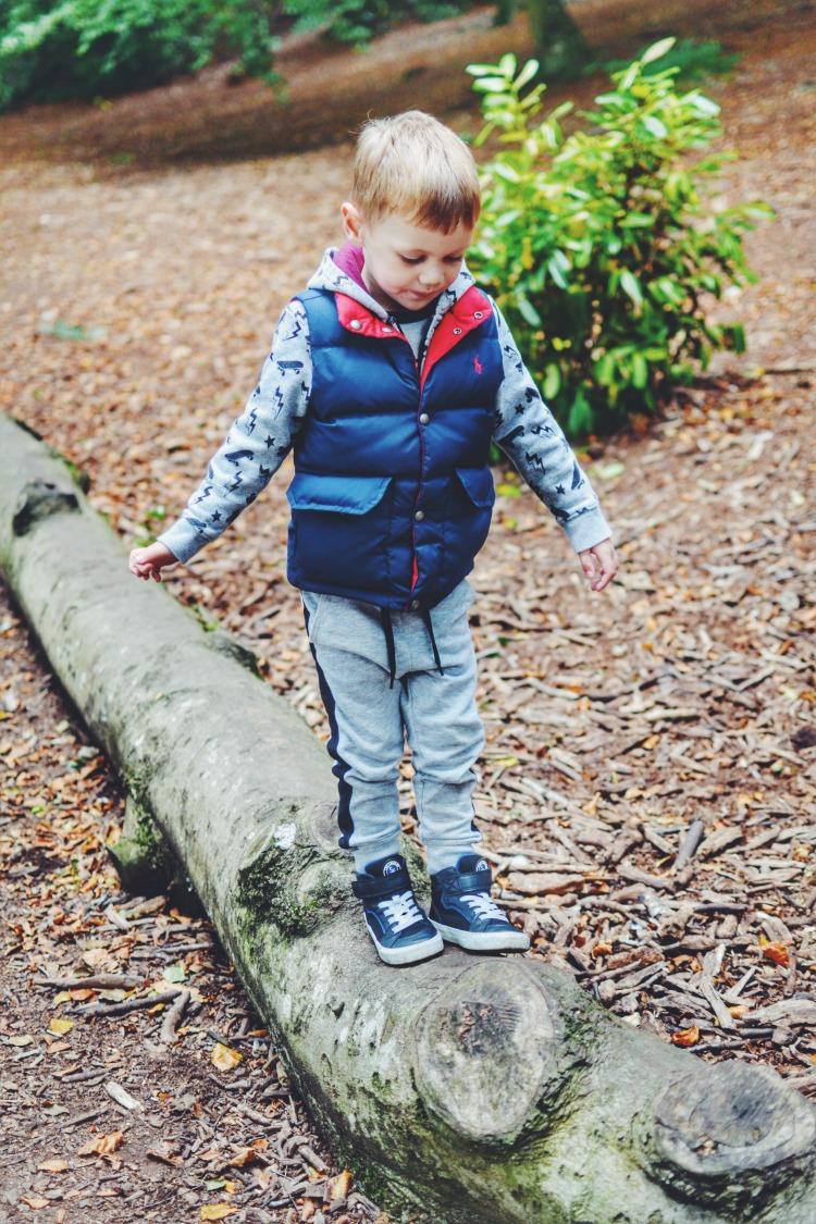 Autumn Walk climbing tree