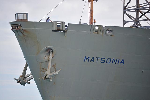 Matsonia name