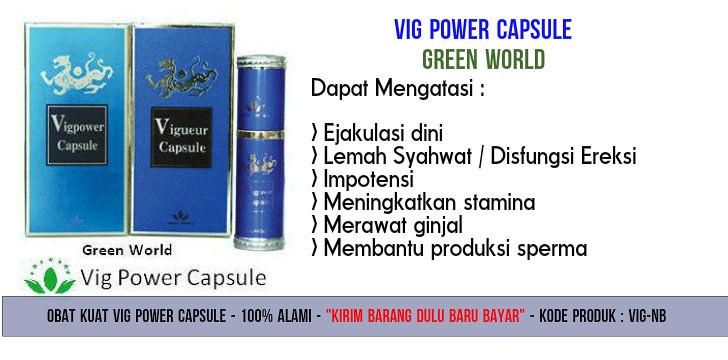 Harga Asli Vig Power Capsule Green World
