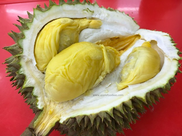 sinnaco-thraka-durian