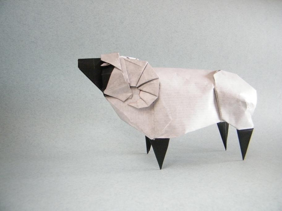 Sheep – Seth Friedman