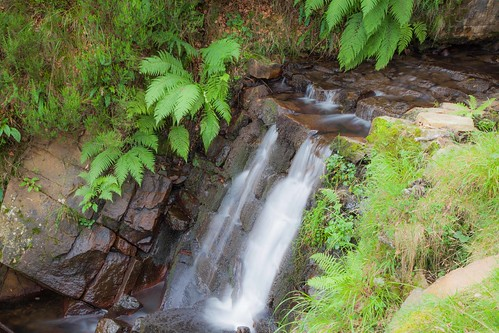 Parque Natural de #Gorbeia #DePaseoConLarri #Flickr - -7964