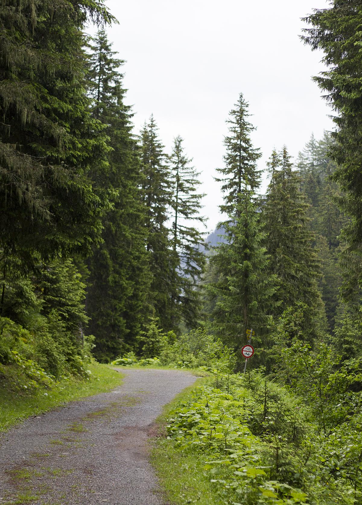 alps-hike-st-anton-austria