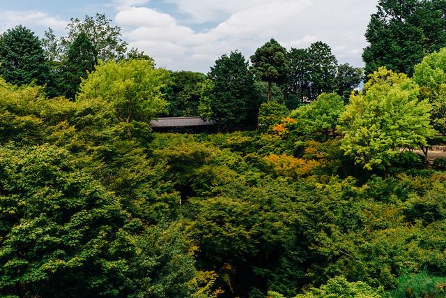 Kyoto_Tofukuji_03