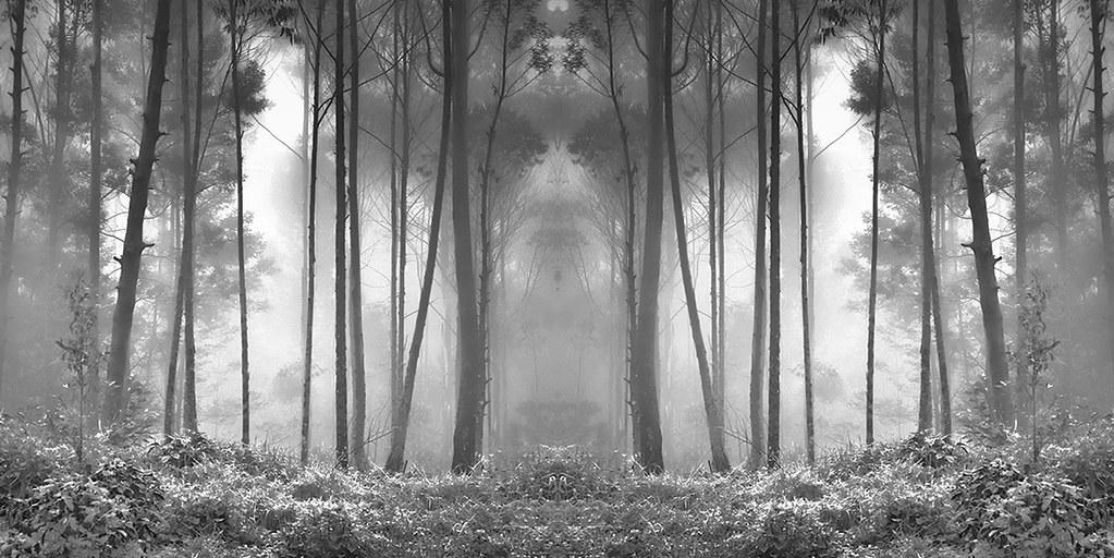 Sacred Passage | by Hengki Koentjoro