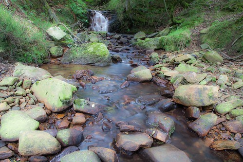 Parque Natural de #Gorbeia #DePaseoConLarri #Flickr - -7976