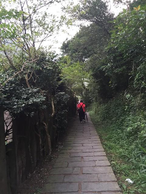 竹子湖2016071706點 (8)