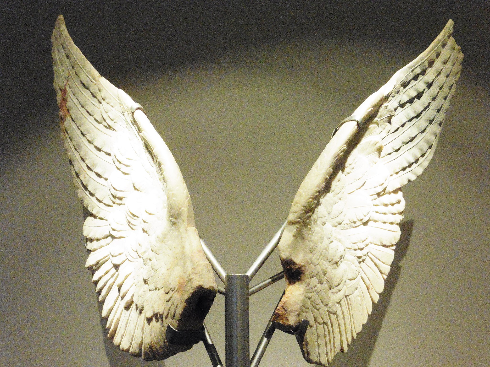 Angel Wings Sculpture in The Palatine Museum