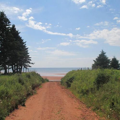 Road down to the beach, 2 #pei #victoria #victoriabythesea #road #beach #red #latergram